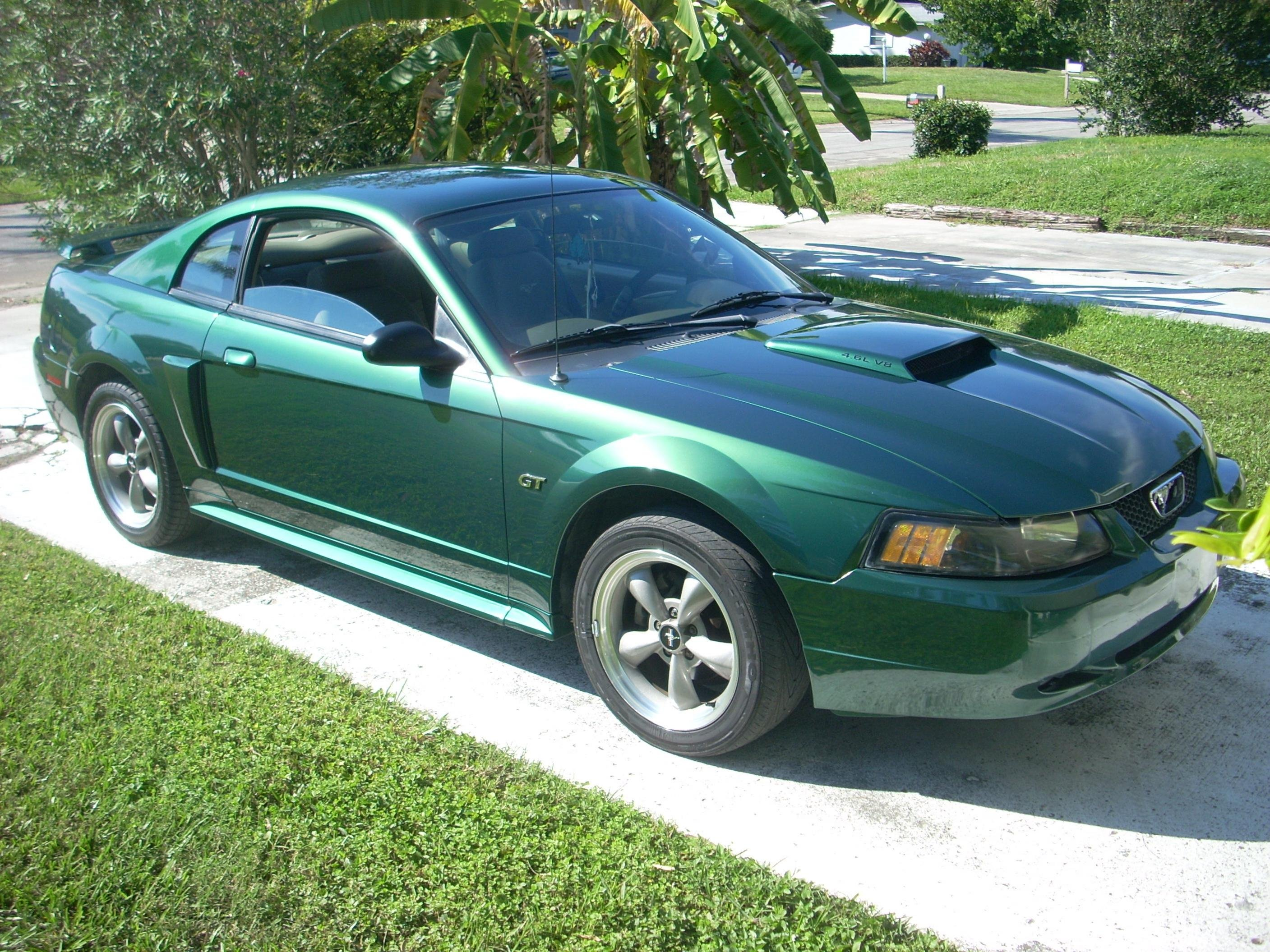 Nice And Shiny 2001 Mustang Gt Ford Mustang Forum