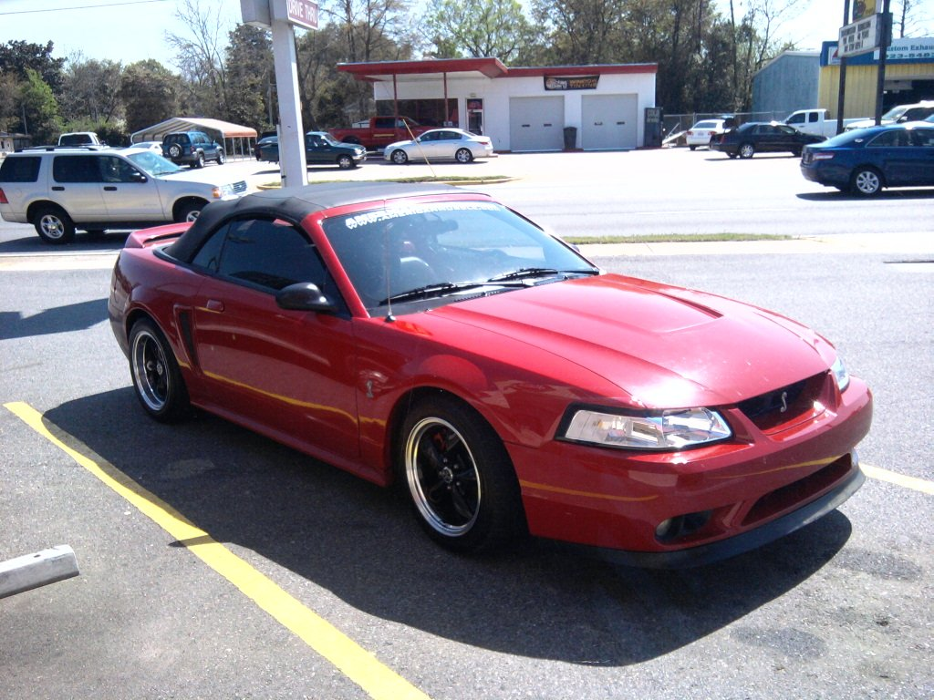 my 1999 mustang cobra pics ford mustang forum. Black Bedroom Furniture Sets. Home Design Ideas