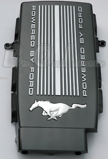Painted My Plenum Cover Ford Mustang Forum