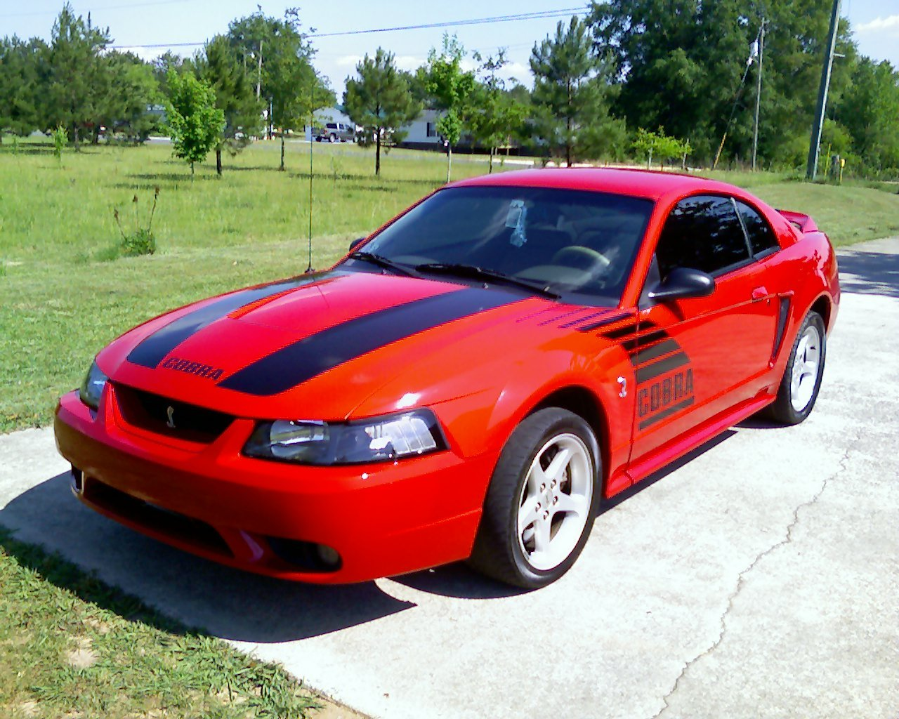 Best mods for a 2001 cobra ford mustang forum