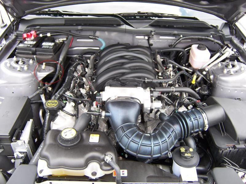 Nissan Maxima Coupe >> Battery Jump starting - Ford Mustang Forum