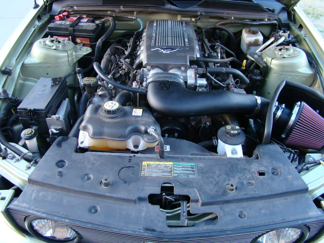 2008 Ford Mustang Gt Premium >> Engine Bay Cleaning - Ford Mustang Forum