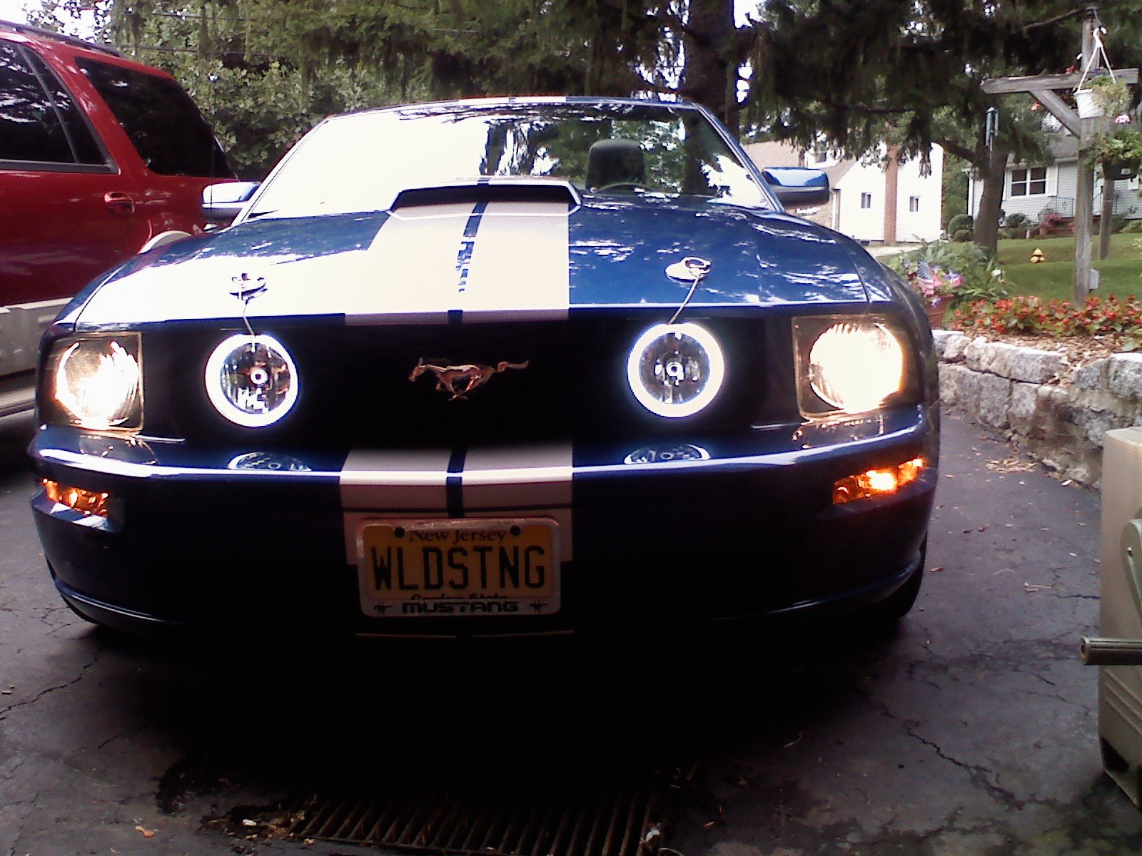 Cffl Halo Foglights Installed Ford Mustang Forum