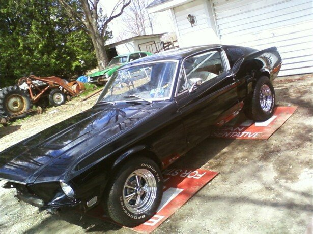 Do I do ?,... Or Do I don't ?,.. 68 FB, 428 CJ-1-mustang-c.jpg