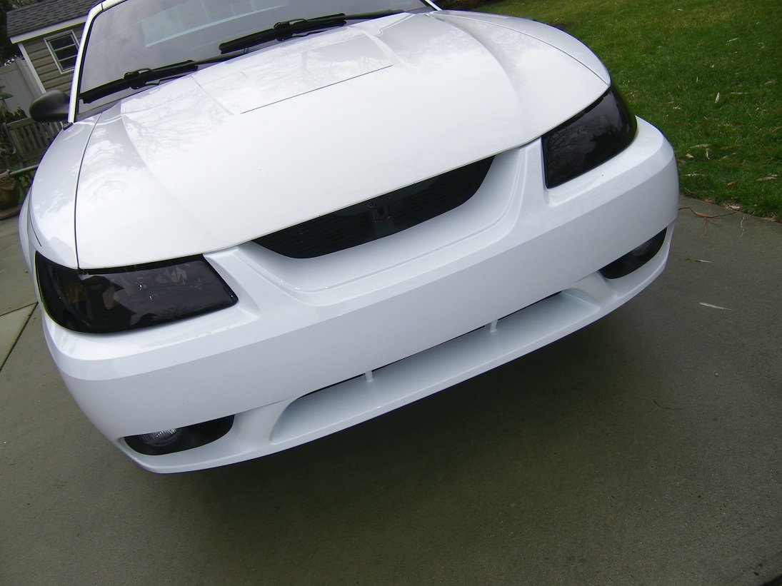 Grill delete on 2001 mustang gt need opinions please 100_0631small jpg