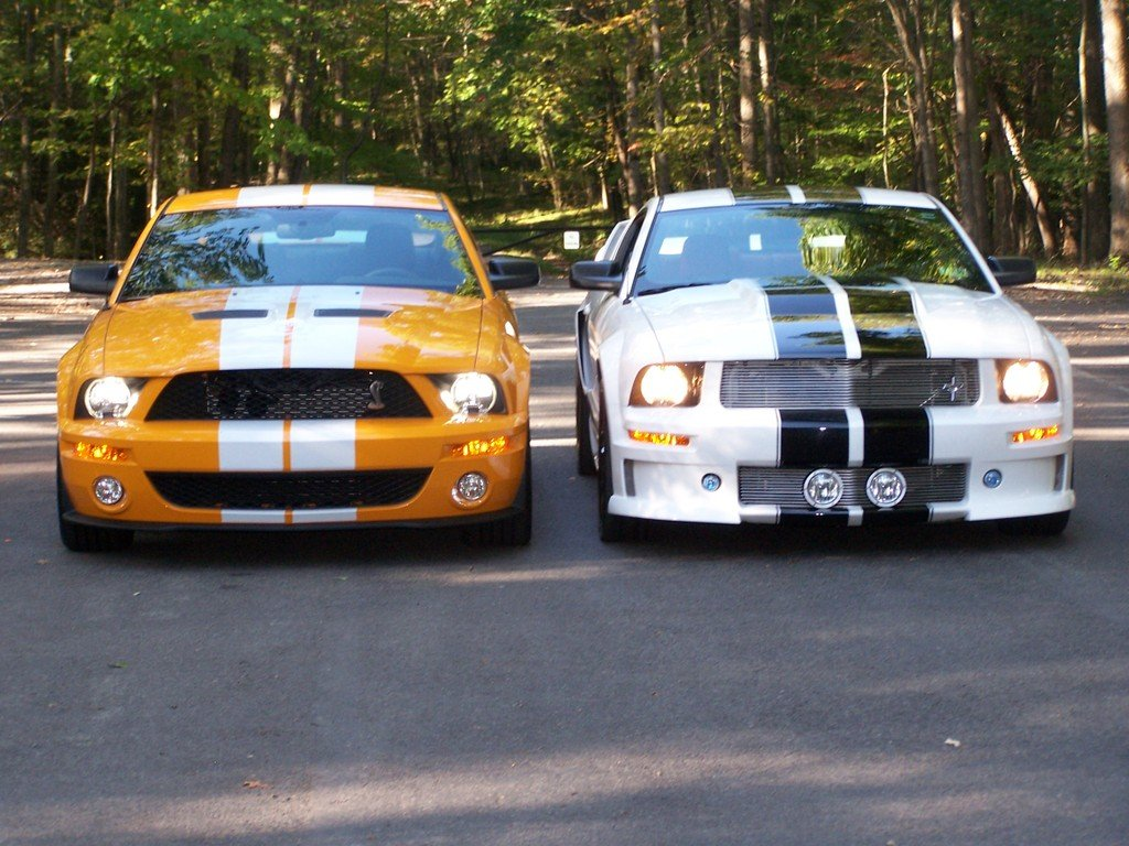 Ford Mustang Cobra 2005 Attached Thumbnails
