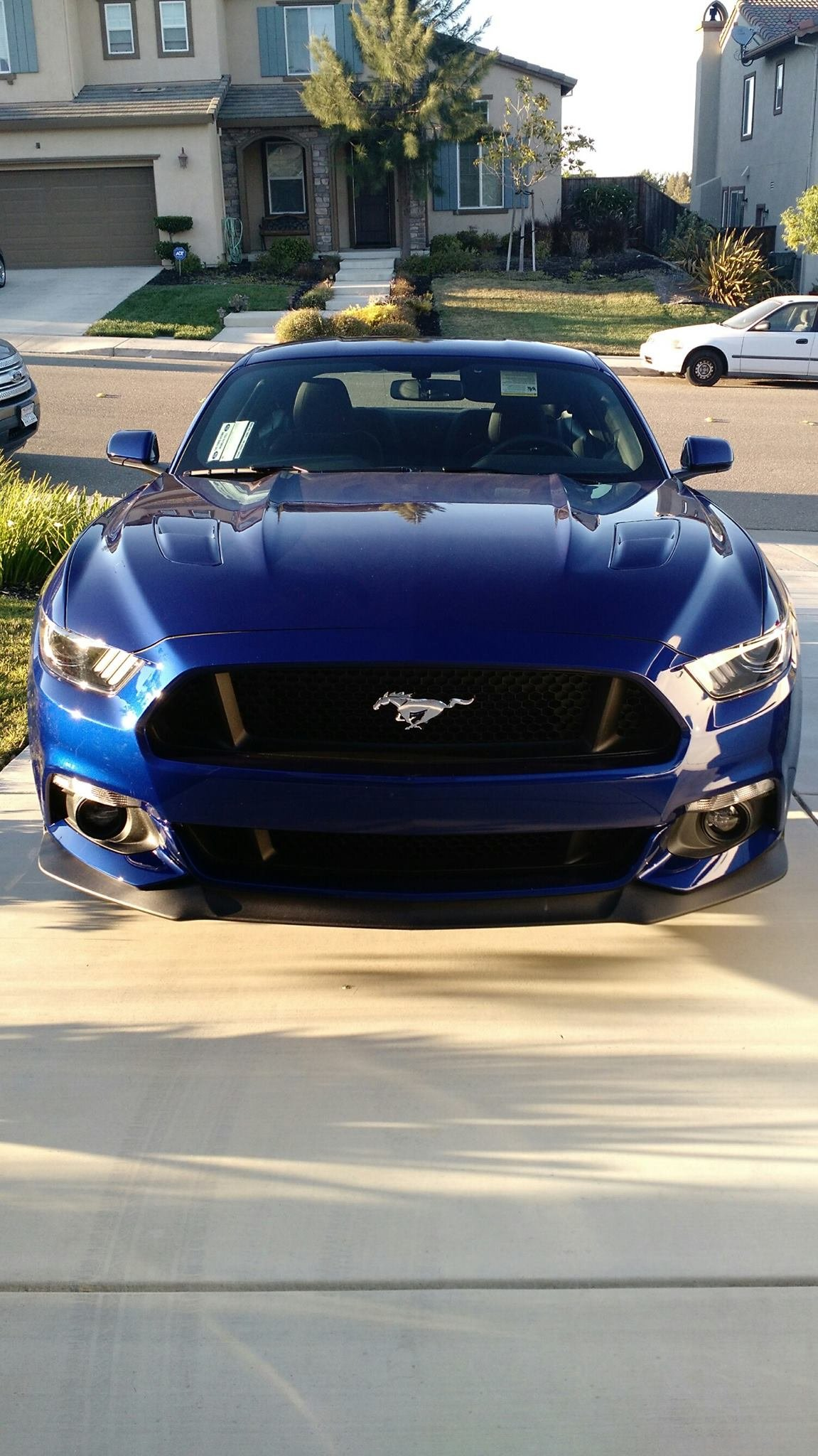 2015+ Pic Thread - Page 3 - Ford Mustang Forum