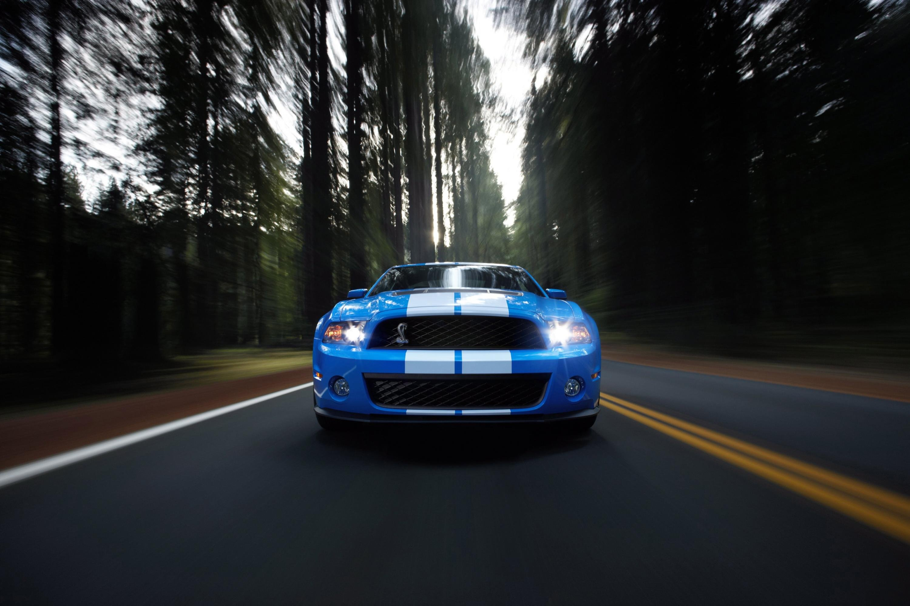 96213d1271271469 2011 mustang wallpaper 10shelbygt500 03 Wallpaper 2011 mustangs