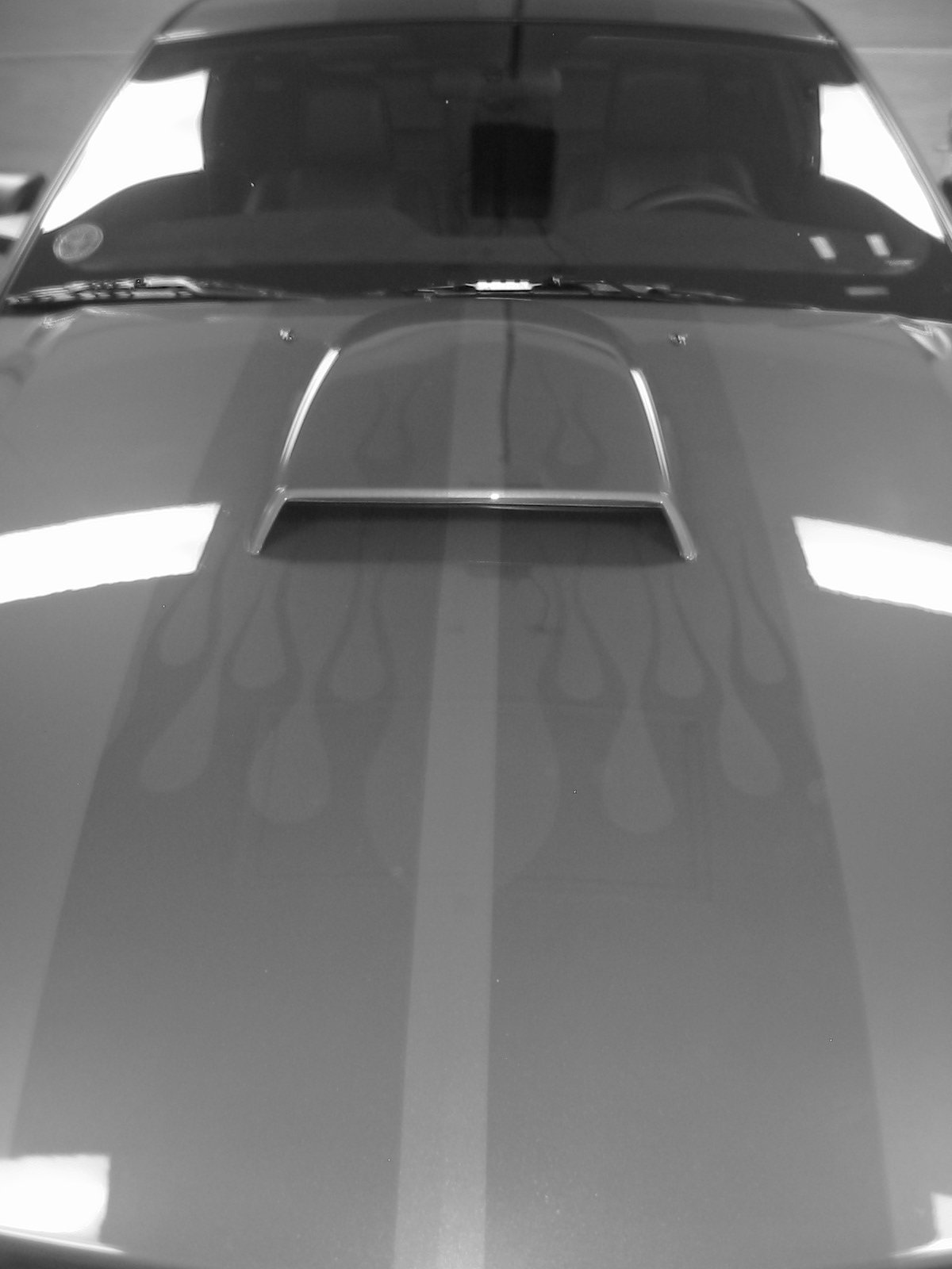 04 Mustang Gt >> Ghost stripes - Ford Mustang Forum