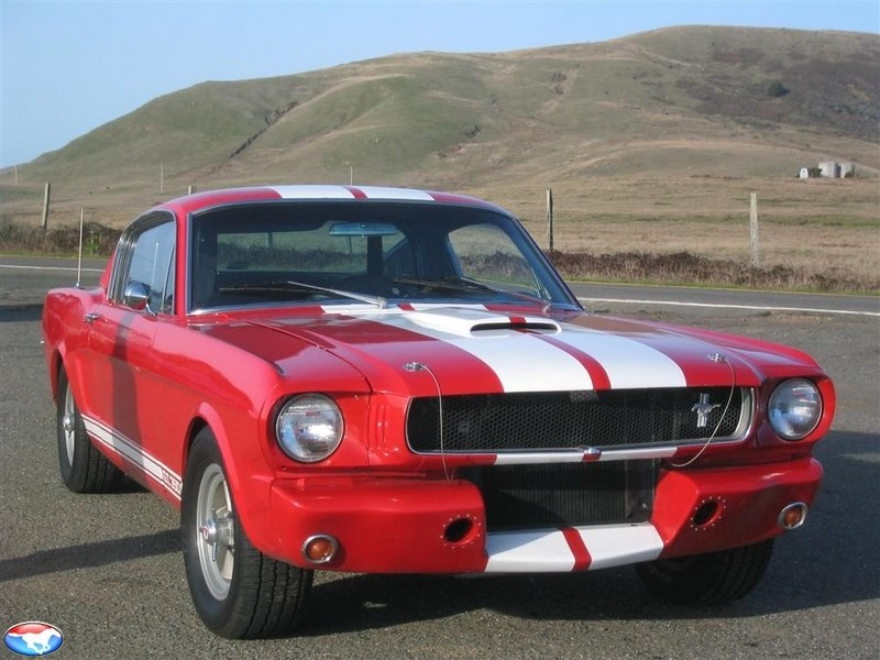 Most forgiving paint color 65 mustang coupe - Ford Mustang Forums