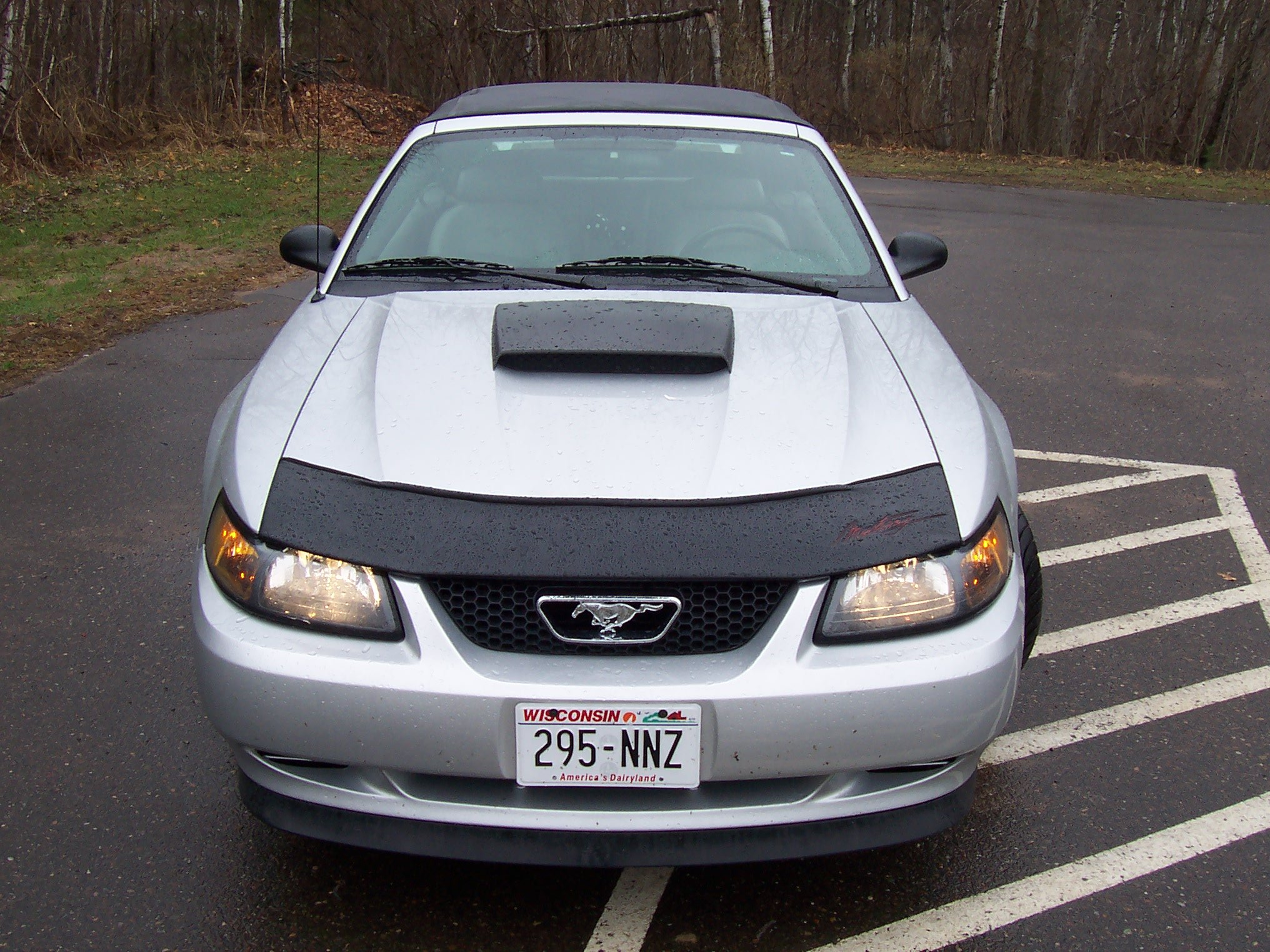 Hood Scoop On 99 Ford Mustang Forum