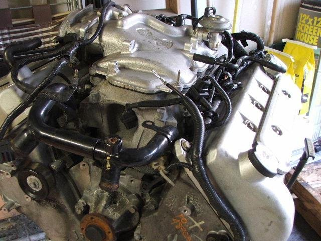 Engine Swap Cost >> Finally got my 2001 4V Cobra engine. (pics inside) - Ford Mustang Forum