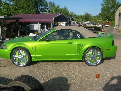 20 Or 22 Inch Rims On 2004 Ford Mustang Droptop Ford Mustang Forum