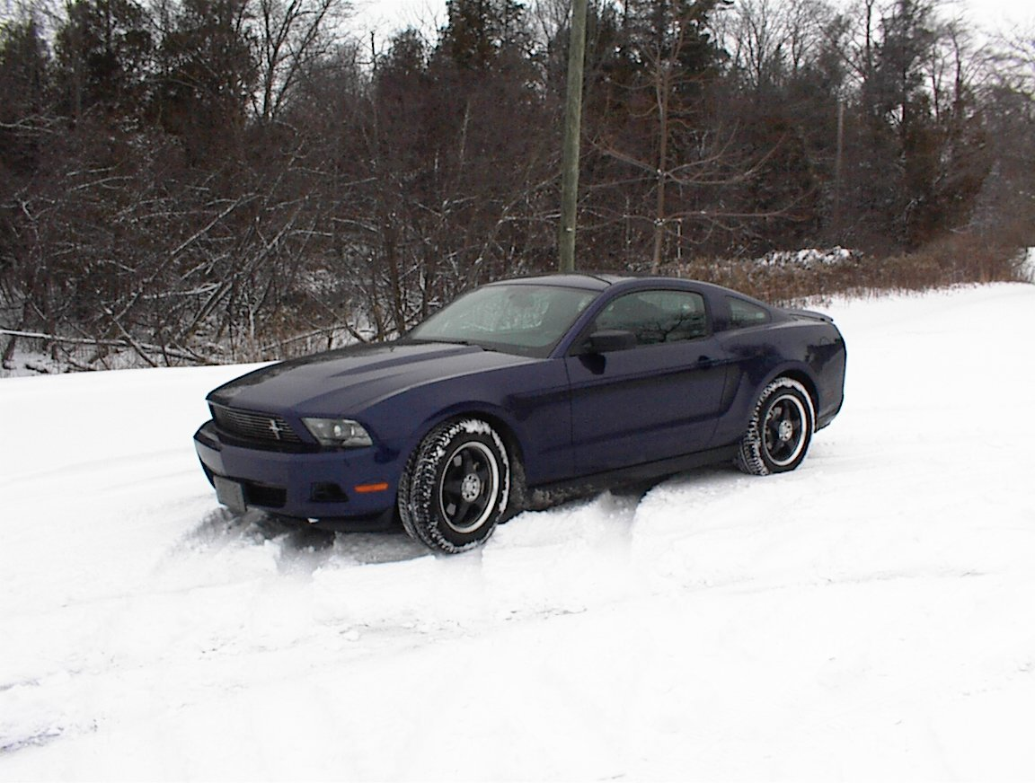 ford mustang forum ver post what 39 s your winter tires. Black Bedroom Furniture Sets. Home Design Ideas