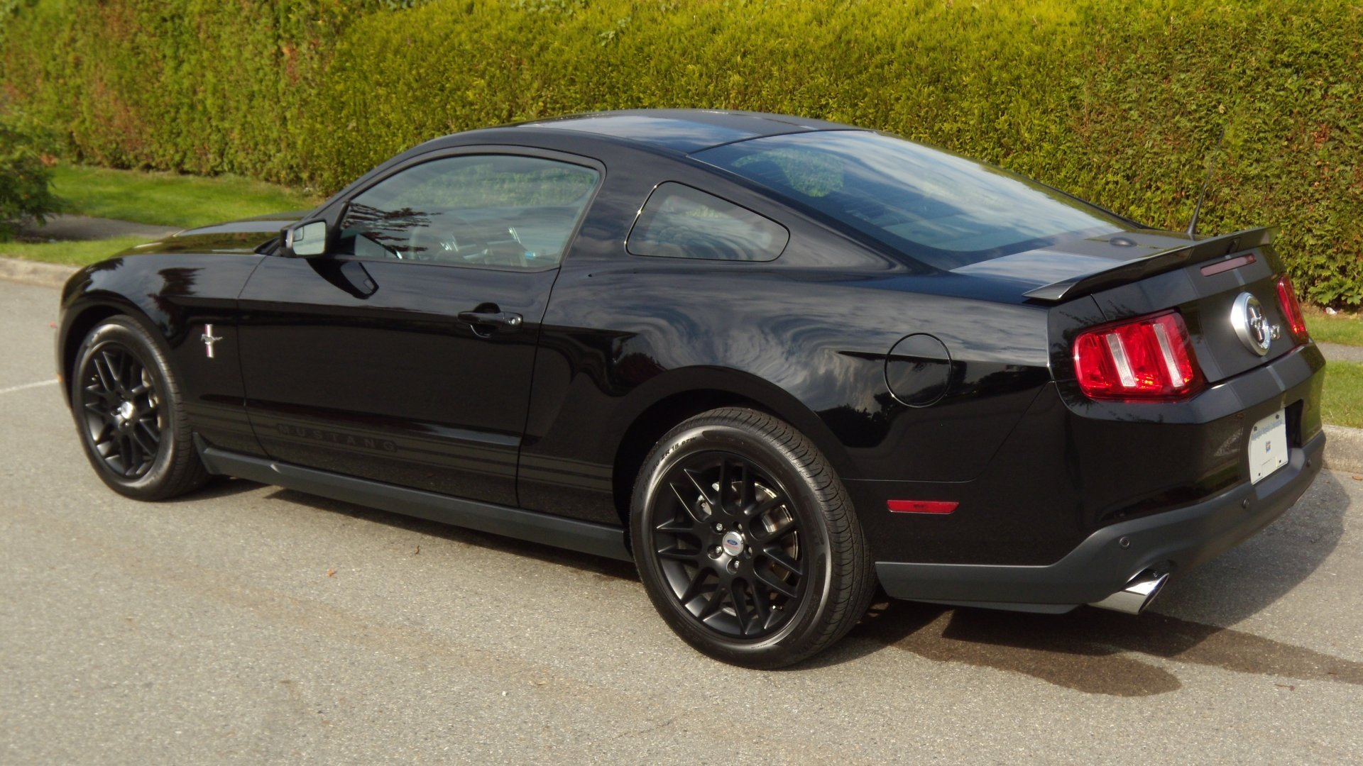 Ford Mustang Forum