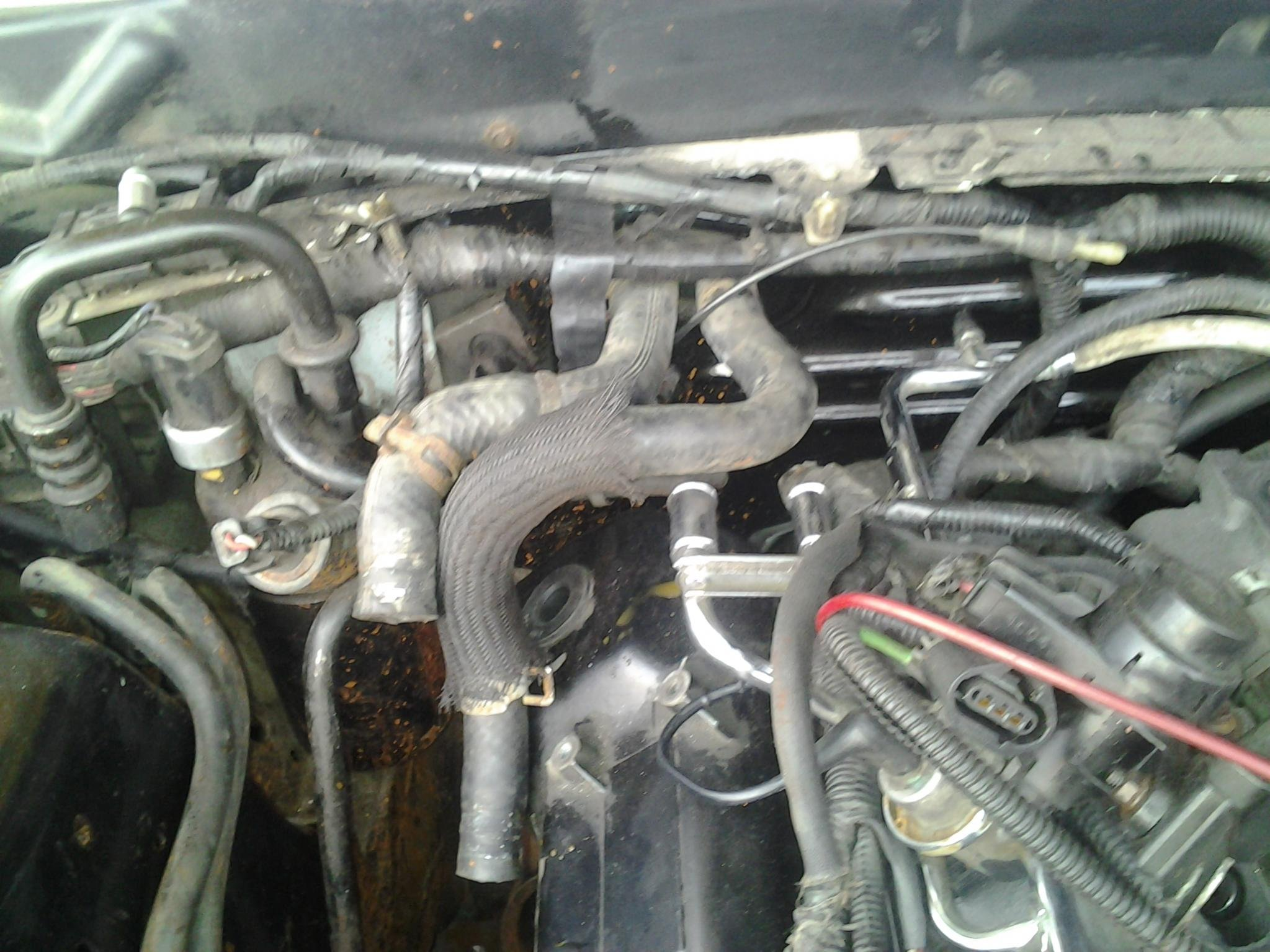 94 mustang 3.8 wiring harness locations? drove nuts!! what plugs are for what??-20120704_195613.jpg