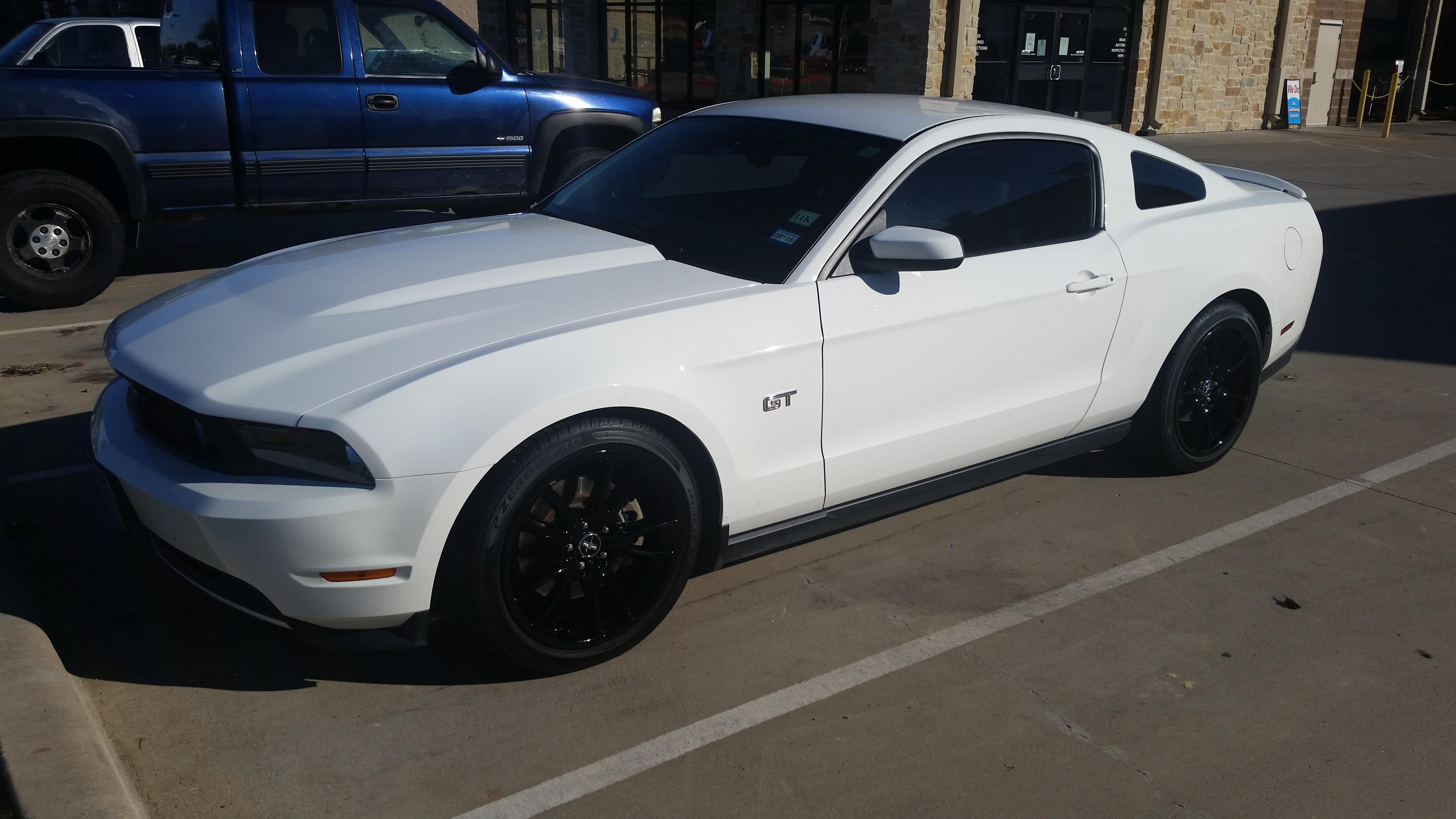 Reasons Why 2010 Is The Best Mustang Ford Mustang Forum