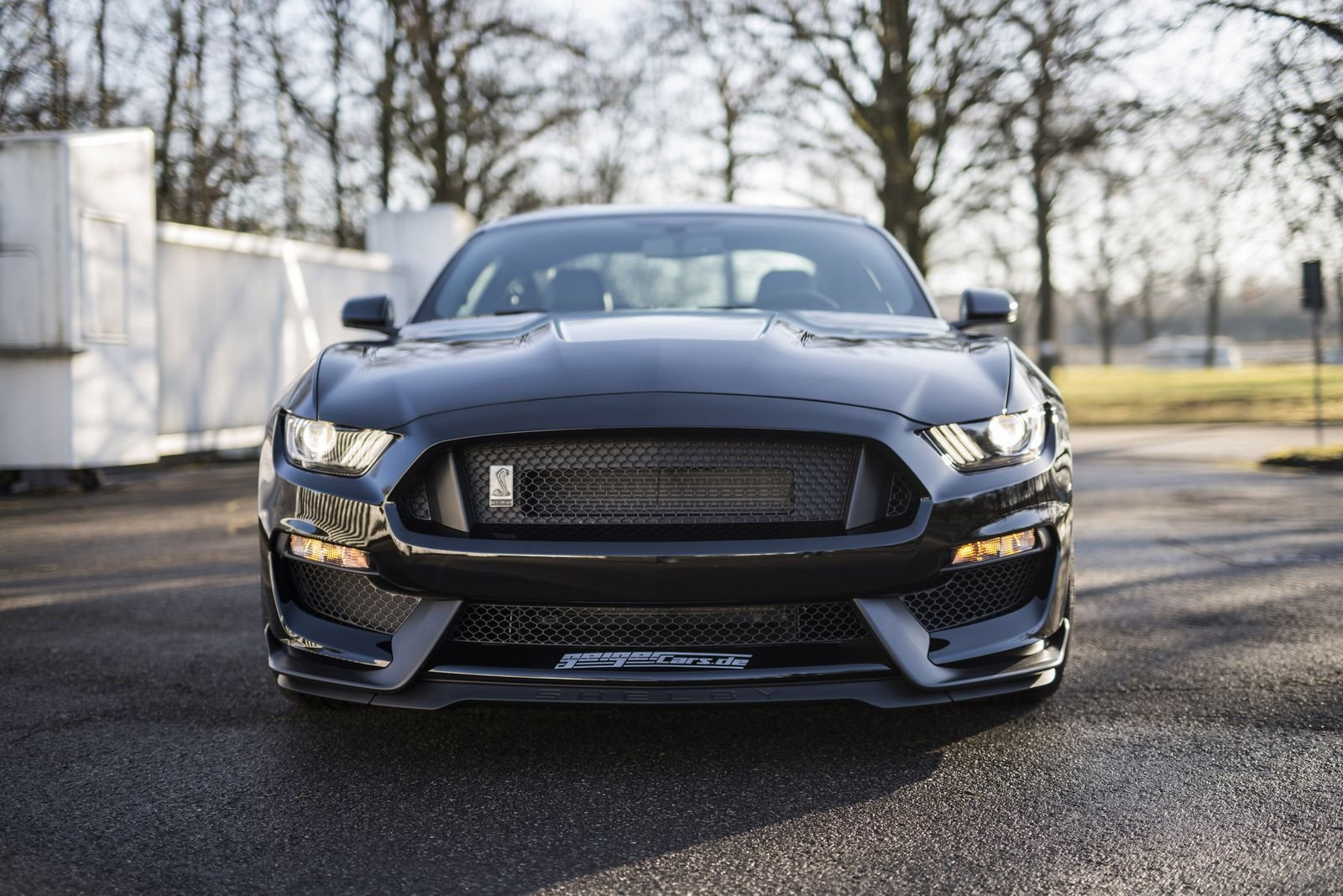 Préféré How To Get a GT350 in Europe! - AllFordMustangs AL81