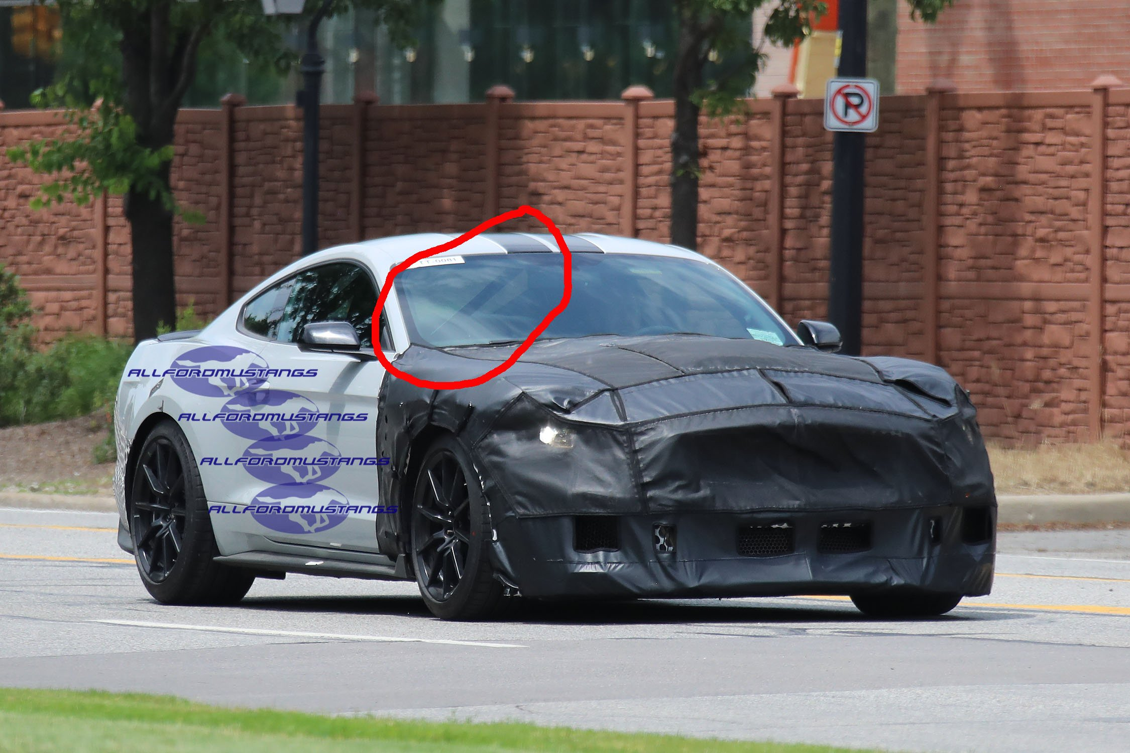 2019 Shelby GT500 Spotted With a Cage - AllFordMustangs
