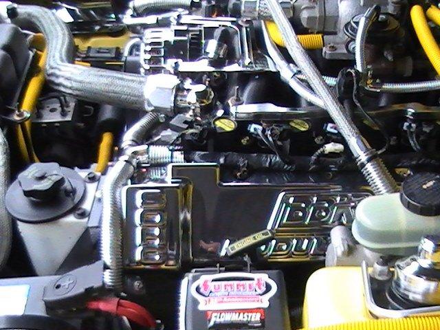 Underhood Dressup Sohc 4 6 Ford Mustang Forum