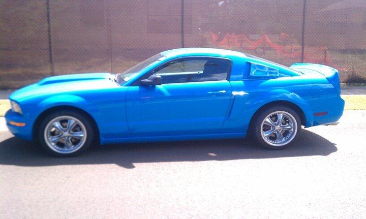 grabber blue 2005 4.0 - Ford Mustang Forum
