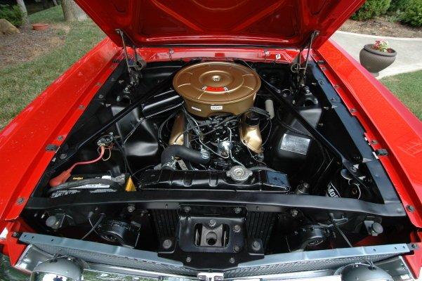 D Mustang Questions