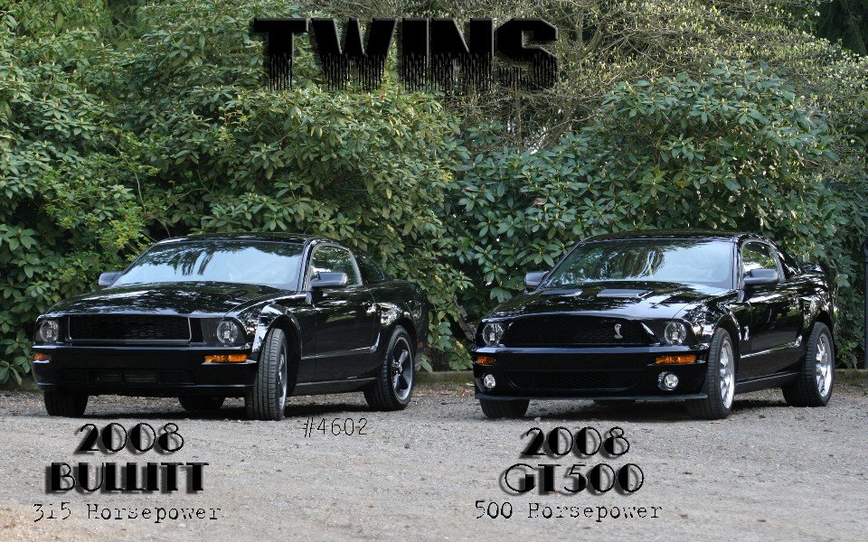 Black Bullitts Finally Ford Mustang Forum
