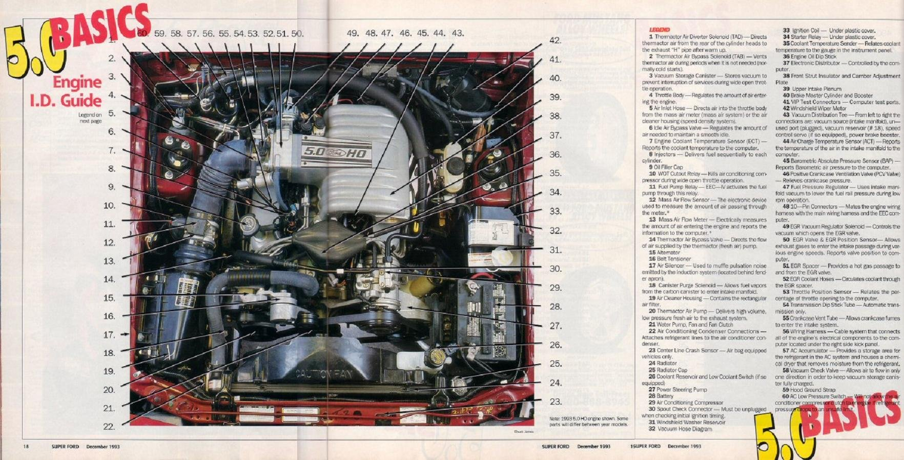 1983 Ford 5 0 Engine Diagram Worksheet And Wiring For 95 Mustang Gt 1994 Compartment Schematics Diagrams U2022 Rh Parntesis Co F 150 50 23 Liter