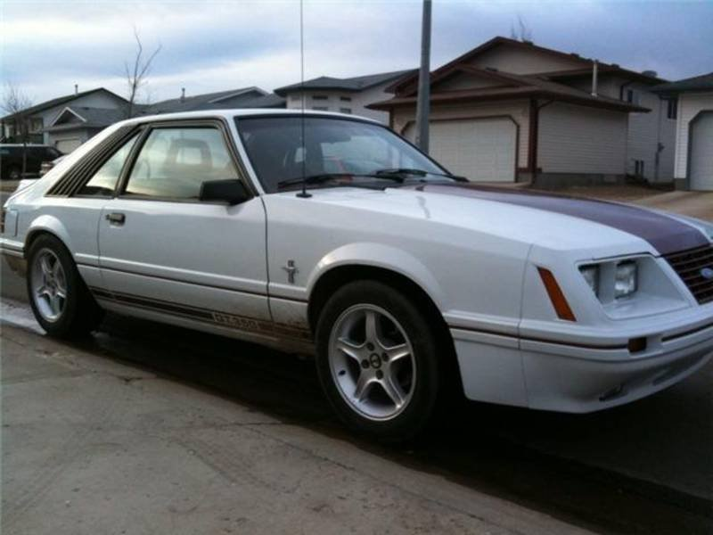 1984 Mustang GT350 good deal  Ford Mustang Forum