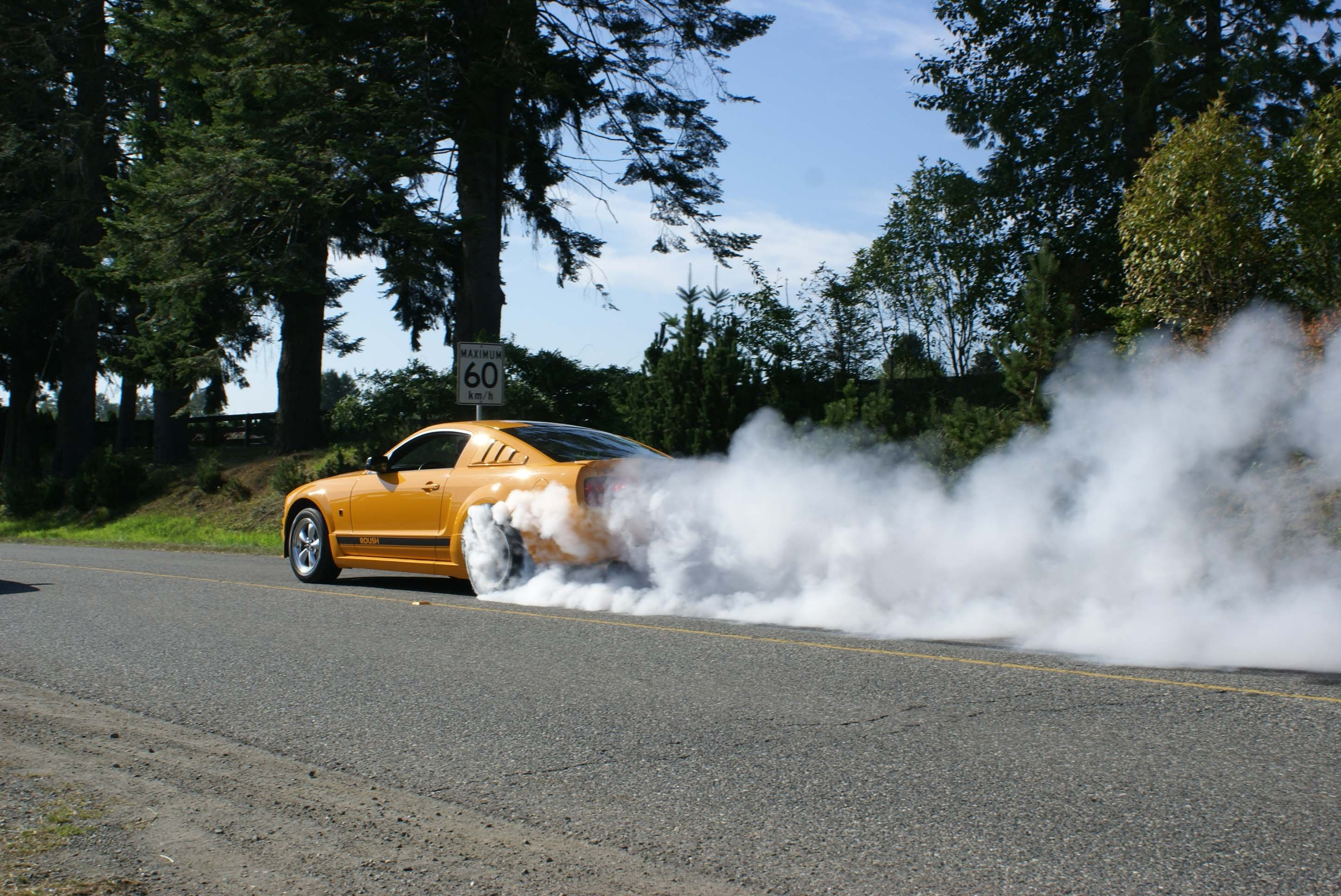 Ford Traction Lok or Auburn - Ford Mustang Forums