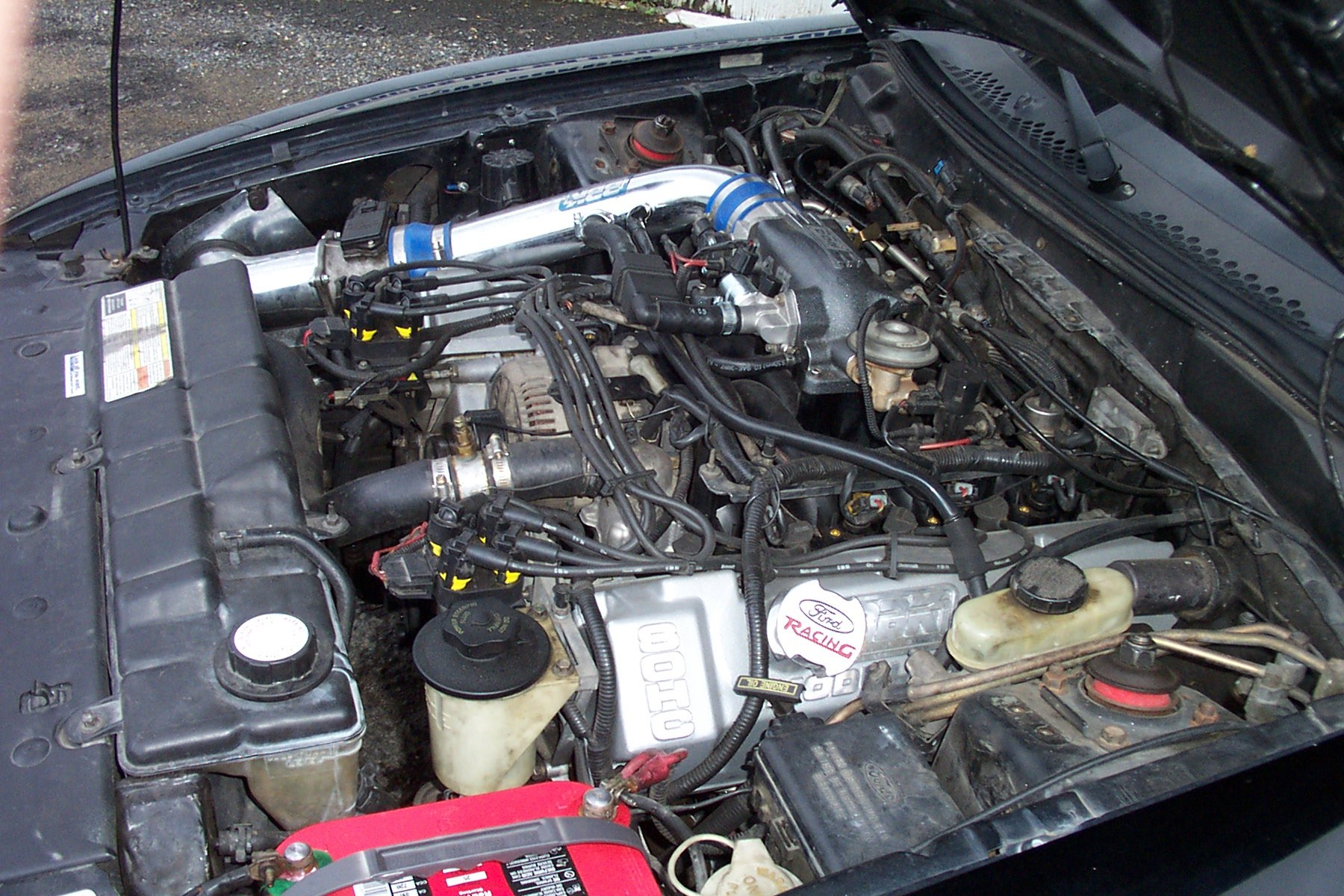 Check Out My Engine 1996 Mustang Gt Ford Mustang Forum