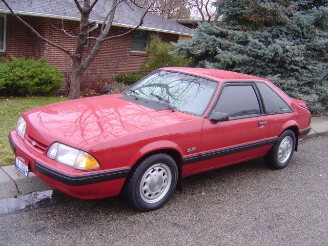 10 Hole Rims 1988 Mustang Tire Question Ford Mustang