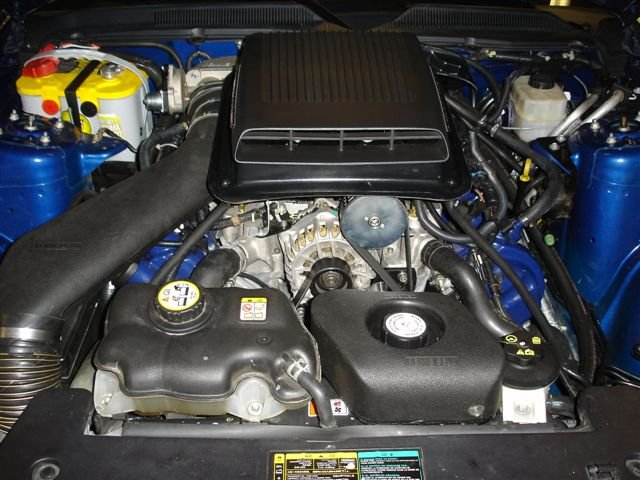 Dsc Zpsf C F additionally D Tail L s My Dsc further D Pic Request Candy Apple Red Redfire W Shelby Razors Any Color But Black Dsc moreover D Gt X Cragar S S Photos Dsc Large moreover D Roush Side Exhaust Tips Dsc. on d mustang gt pictures dsc