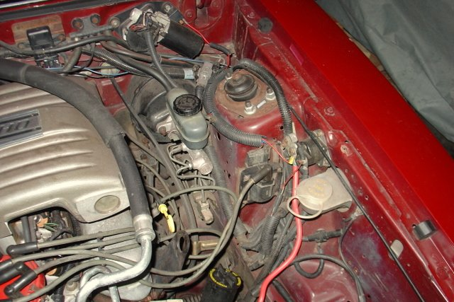 clean up engine bay picture-dsc09011.jpg