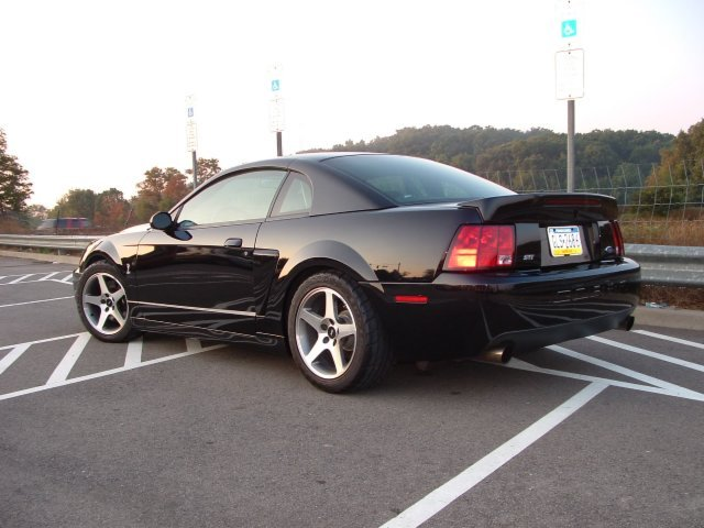 03 04 Cobra Or S197 Ford Mustang Forum