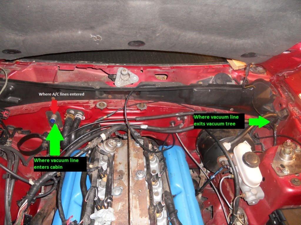 1995 Mustang Gt Fan Not Working Ford Mustang Forum