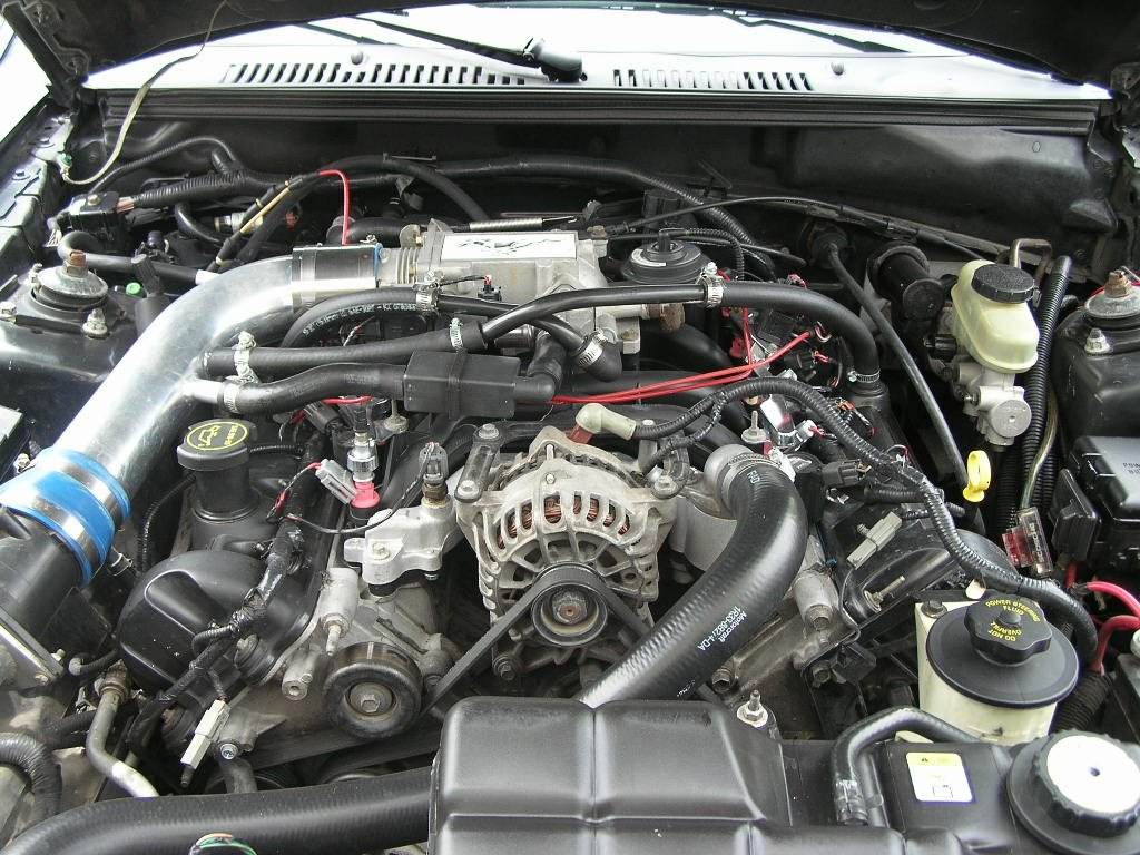 Just Adoring My Ford 4 6 L Engine Bay Ford Mustang Forum