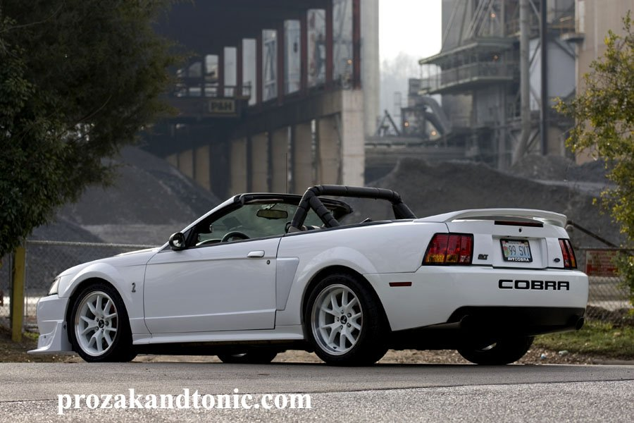 Should I Get A Roll Bar Ford Mustang Forum