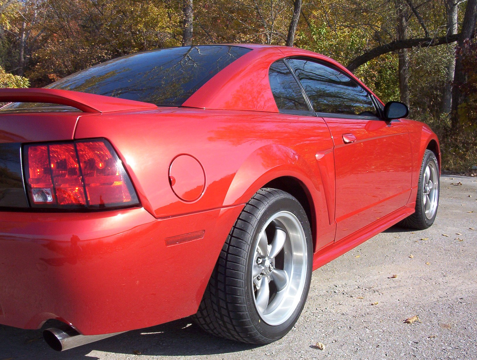 new member 1999 mustang gt pics ford mustang forum. Black Bedroom Furniture Sets. Home Design Ideas