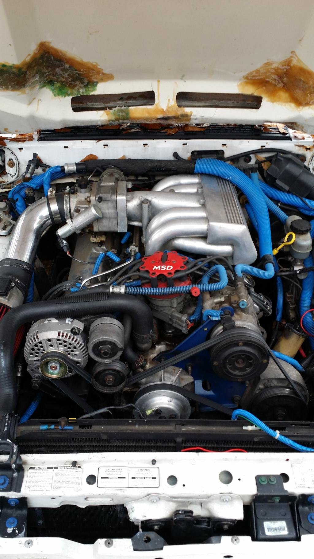 1993 mustang gt efi to carburetor swap ford mustang forum click image for larger version name ford mustang engineg views 563 size sciox Choice Image
