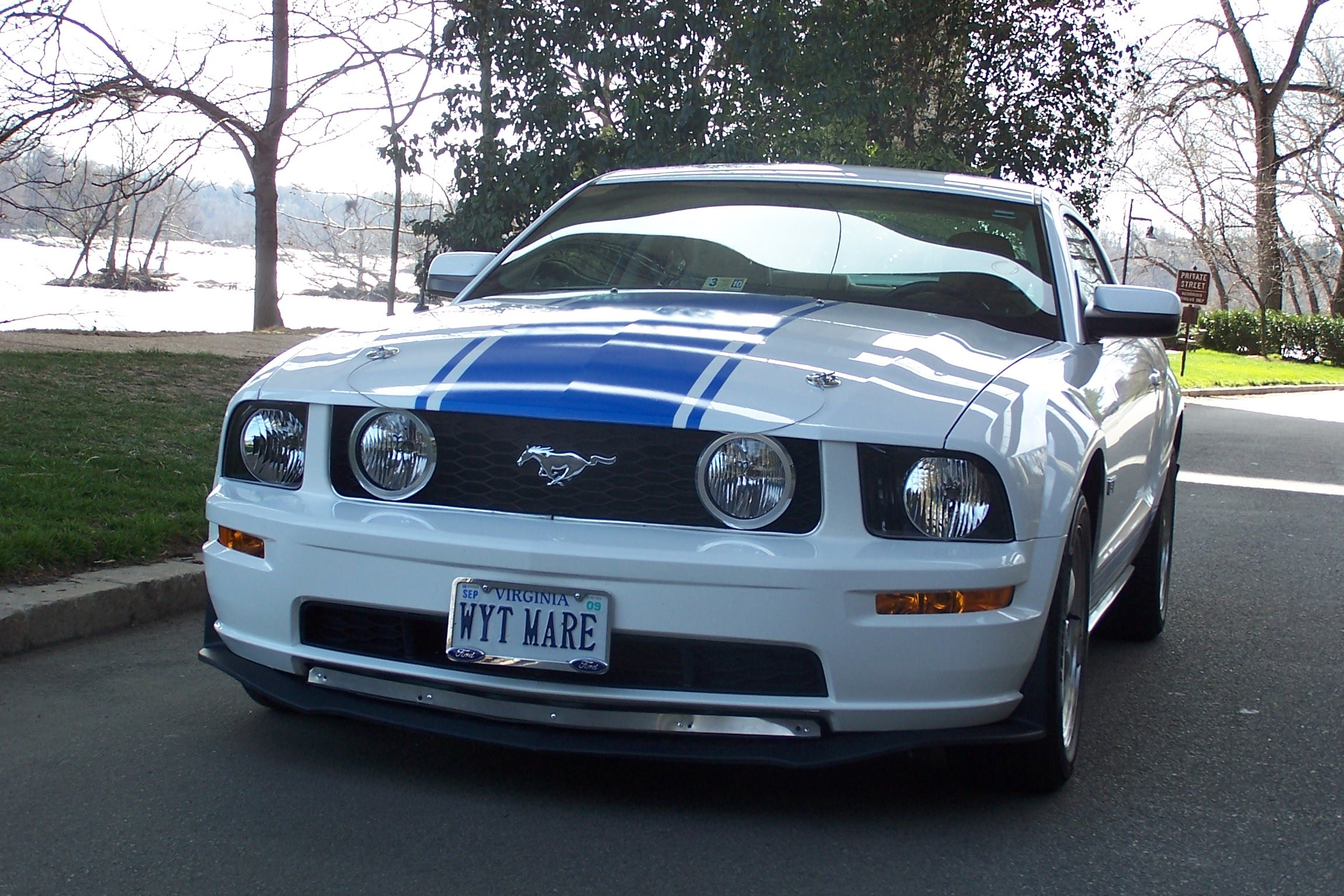 2009 Mustang with a stripe question-front-bumper-close.jpg