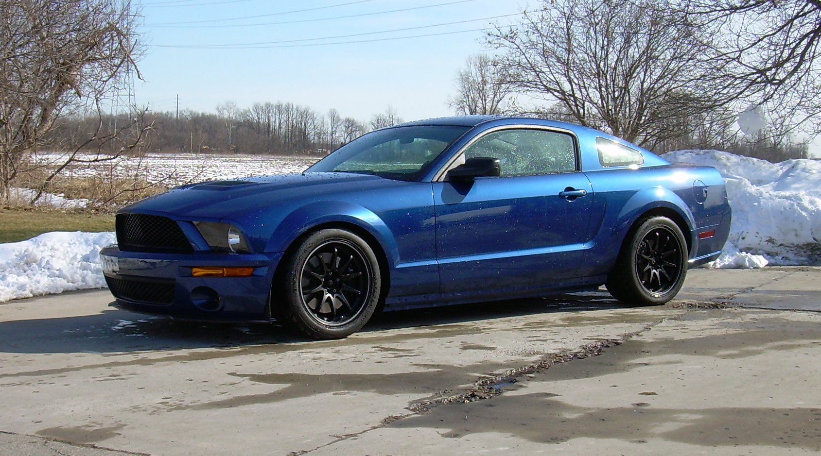 Vista Blue Mustang Styling Ford Mustang Forum