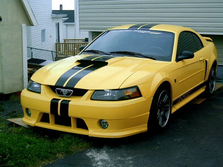 F also D Racing Stripes Help Gates Roush further Ford Mustang Eleanor Container as well  in addition Venta De Motor Para Ford Mustang. on 1999 ford mustang