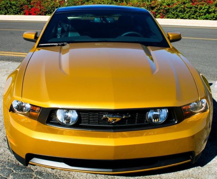 Aztec Gold Mustang