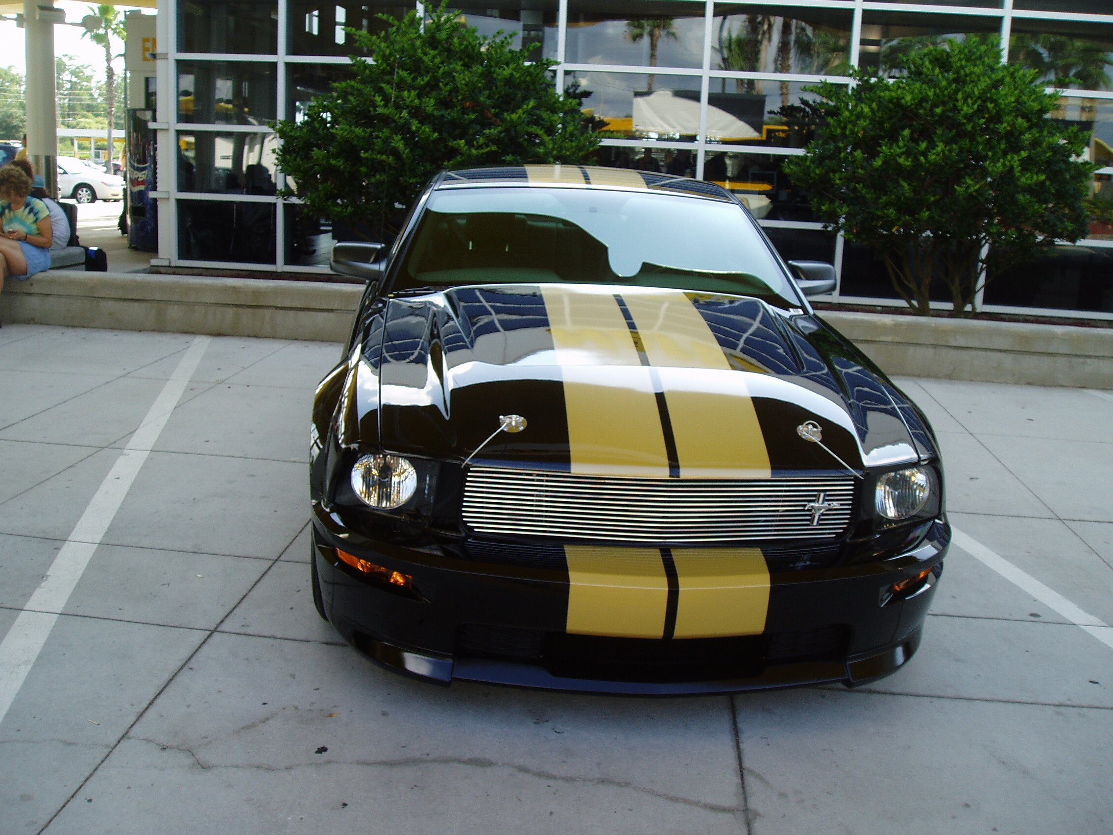 http://www.allfordmustangs.com/forums/attachments/2005-2010-mustang-talk/41956d1207012151-whats-your-thoughts-gt-h-hertz-gt.jpg