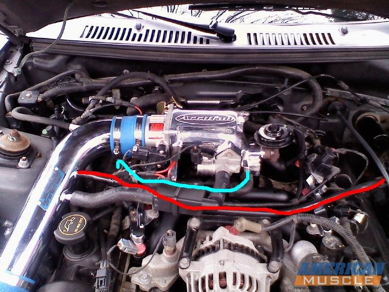 hose on 2003 Mustang gt TB | Ford Mustang ForumAll Ford Mustangs