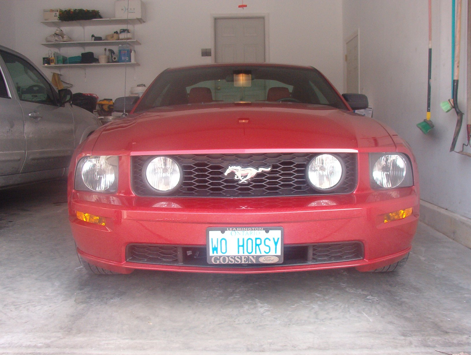 personal license plate suggestions page  ford mustang forum