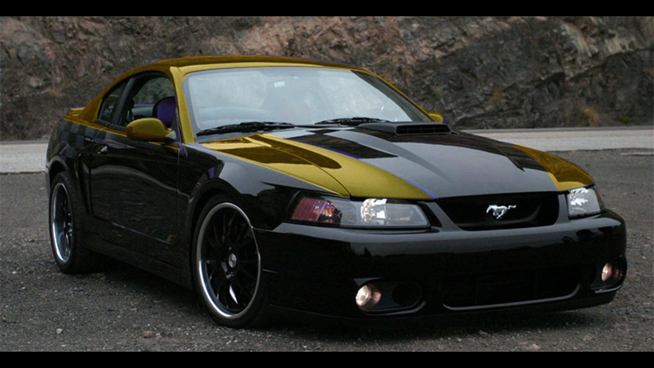 I Need Some Opinions On A Paint Job Ford Mustang Forum
