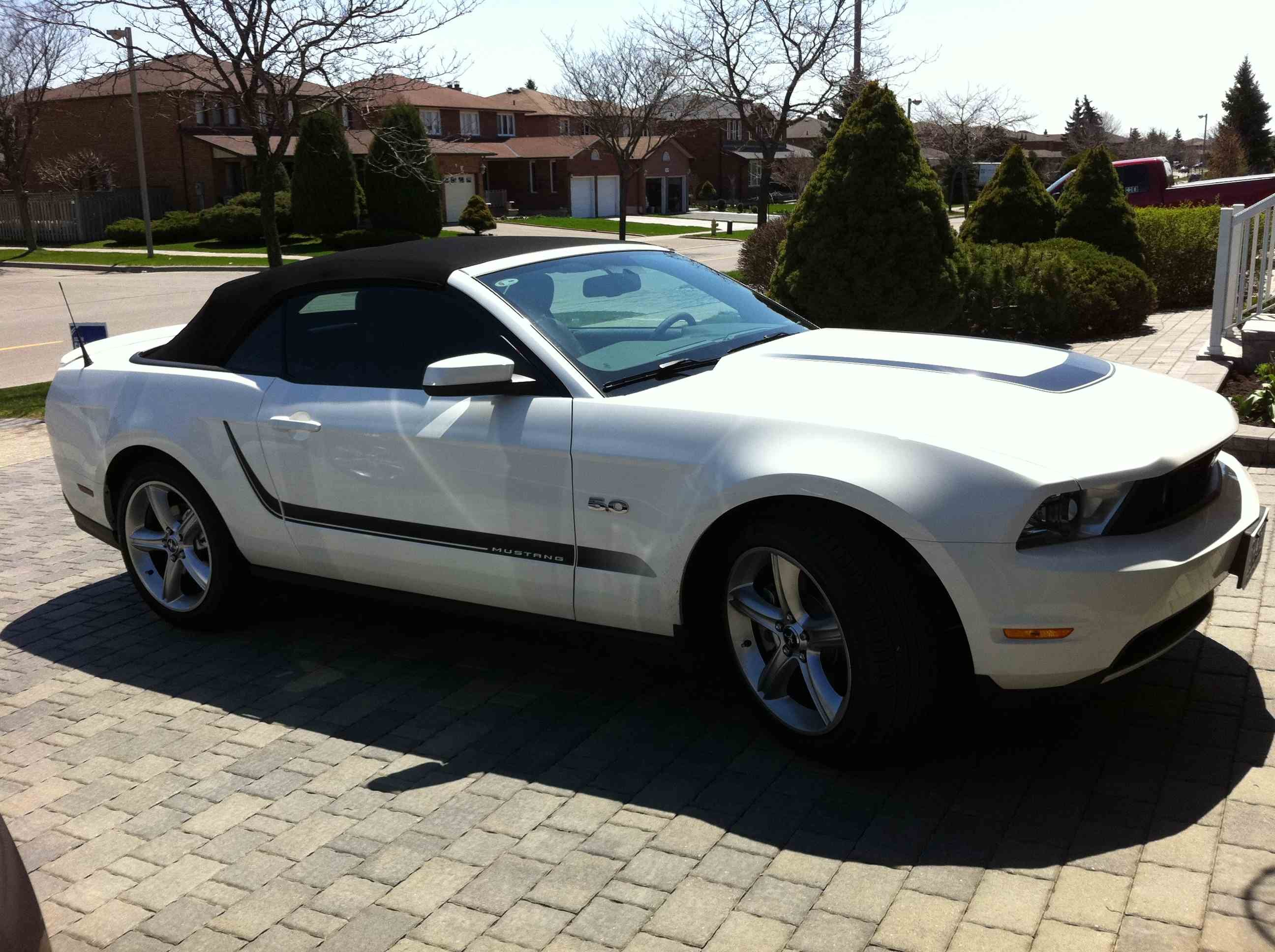 click image for larger versionnameimg_0166_2jpgviews8361size2896 - Mustang 2012 White