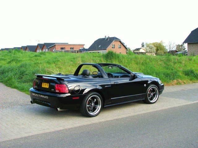 New Pics Of My 2004 Mustang Gt Convertible Ford Mustang